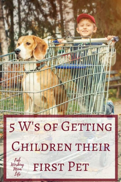 5 W's of Getting children their first pet