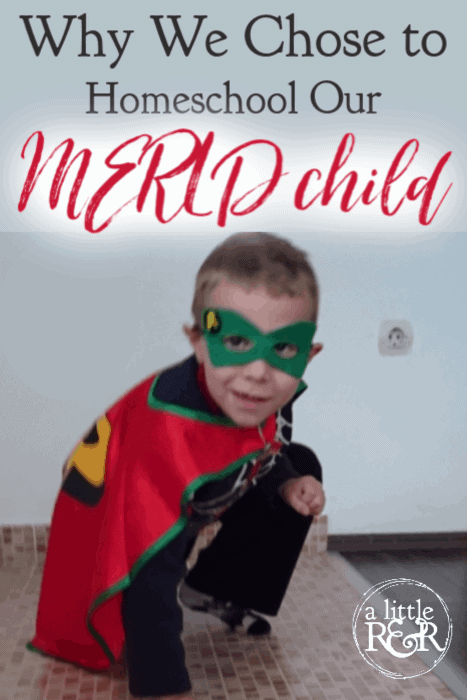 If you're considering homeschooling a child with MERLD - Mixed Expressive Receptive Language Disorder, or any other language disorder, here is why we made that decision. #MERLDhomeschooMom #language #languagedevelopment #MERLD #homeschool #specialeducation