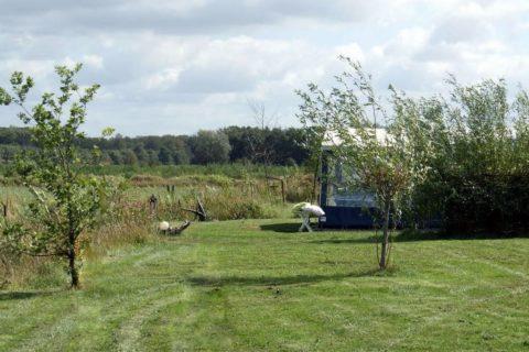 Camping Oudewillemsveldt ruime plaatsen