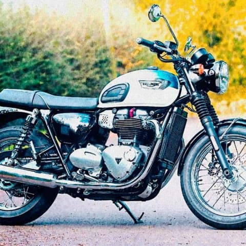 Triumph T100 parked on road