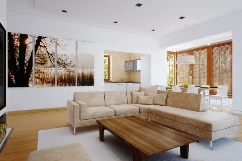 Smart living room with natural style