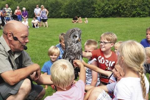 Camping Zonnekamp recreatie voor kinderen
