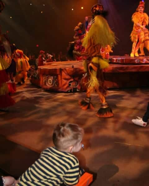 animal kingdom, disney's animal kingdom, lion king show, lion king show animal kingdom, animal kingdom with babies, animal kingdom with toddlers, animal kingdom with preschoolers