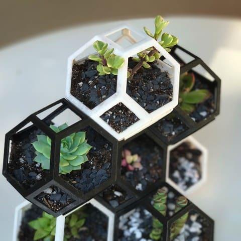 3D Printed Hexagonal Plant Holder