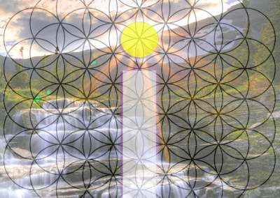 iNstrumentality Flower of Life design