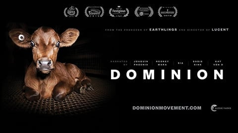 Dominion Documentary - Watch The Full Film For Free