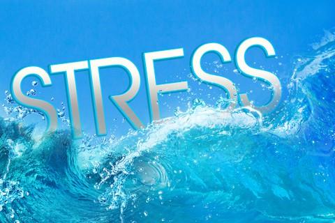 Stress og motion. Hvad virker bedst