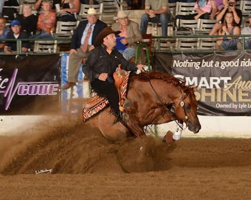 Reward Offered after Reining Horses Sabotaged at Competition