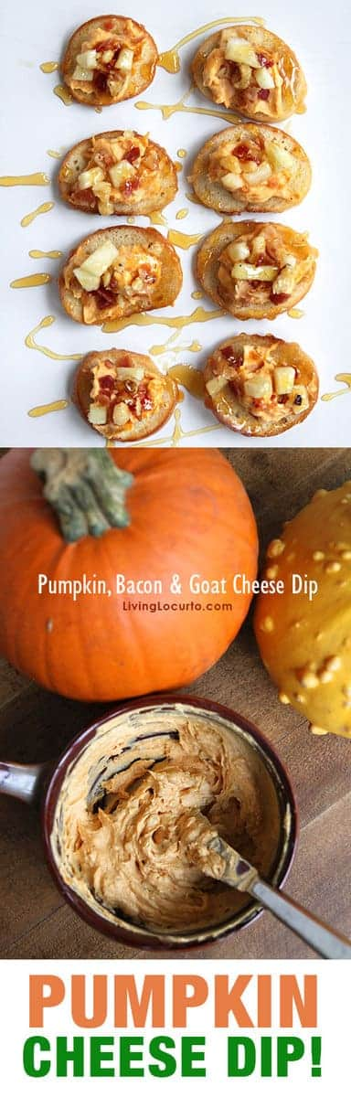 Bacon Goat Cheese Pumpkin Dip - Thanksgiving Appetizer Recipe. A sweet, savory goat cheese pumpkin dip recipe for Thanksgiving topped with apples, bacon and nuts. A bite sized party appetizer drizzled with honey.