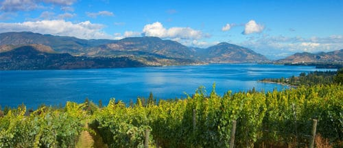 Okanagan Valley BC Wine Country Guide - Summerhill Pyramid Winery | Winetraveler.com