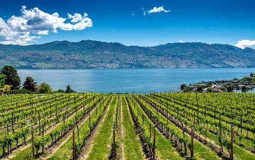 Best Wineries, Restaurants and Hotels in Kelowna, Okanagan, British Columbia Canada | Winetraveler.com