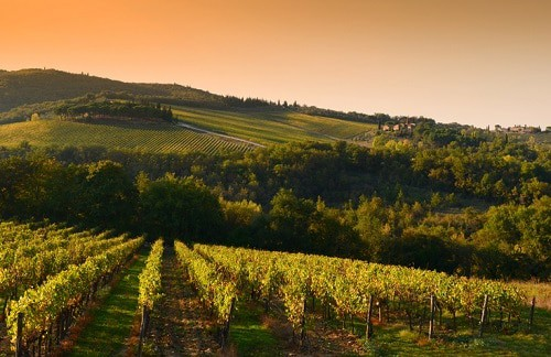 Chianti Itinerary: How To Spend 5 Days in Chianti, Tuscany • Winetraveler