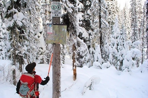 Where to Ski in British Columbia Canada