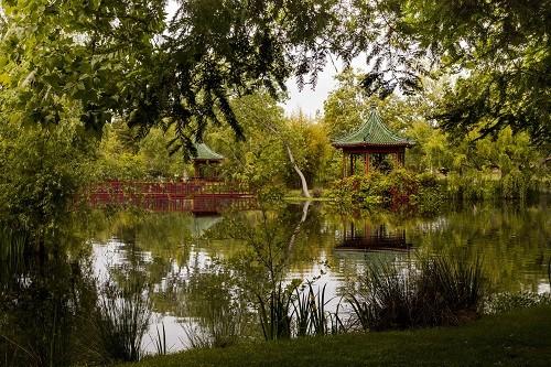 Chateau Montelena Jade Lake Chinese Garden Visit | Winetraveler.com