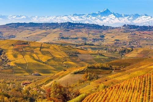 Travel Itinerary: Langhe-Roero & Monferrato in Piedmont • Winetraveler