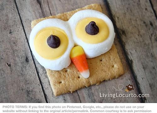 Owl Smores by  LivingLocurto.com
