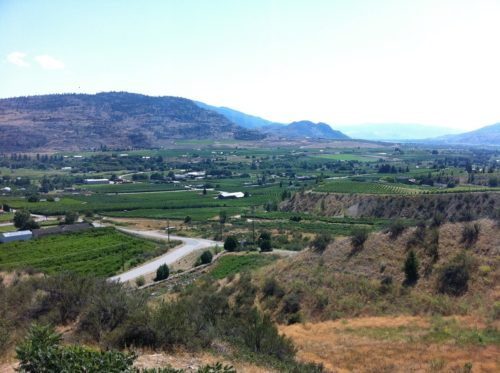 Oliver and Osoyoos Landscape View | Winetraveler.com