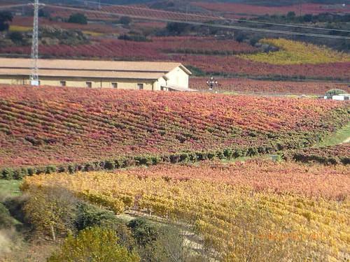 The Three Sub Regions (Appellations) of La Rioja include Rioja Baja, Rioja Alta and Rioja Alavesa.
