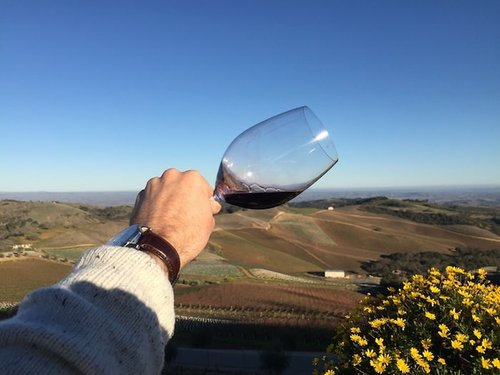 Paso Robles Road Trip Itinerary | Daou Vineyards View | Winetraveler.com