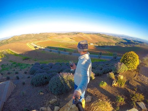 Overlooking the vines and countryside at Daou Vineyards in Paso Robles, CA | Winetraveler.com