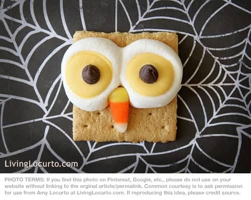 Owl Smores Recipe by Amy Locurto at LivingLocurto.com