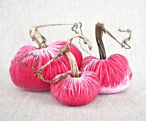 pink-plush-pumpkins