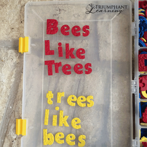 """Use letters such as the Lauri Toys Mini Alphabet Avalanche or magnetic letters to build word families. Suggest a word such as """"bee"""" and have your child change the first letter to make a new word."""