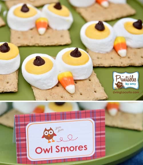 Owl Smores Dessert Sign. Owl Birthday Party ideas and printables. Unique party designs and desserts with a plaid outdoor camping theme.