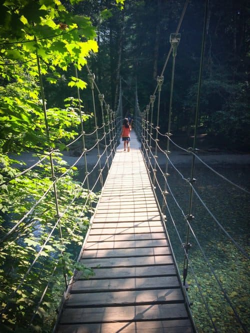 A child walking on a suspension bridge along the Grove of the Patriarchs, one of the Mount Rainier hikes