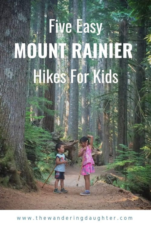 Five Easy Mount Rainier Hikes For Kids | The Wandering Daughter | Suggestions for easy hikes for young kids at Mount Rainier National Park in Washington state.