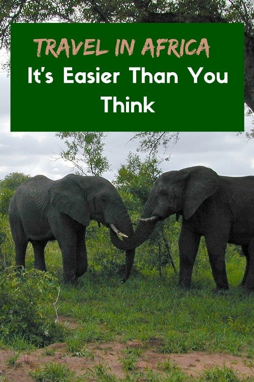 African Elephants - Travel in Africa is easier than you think