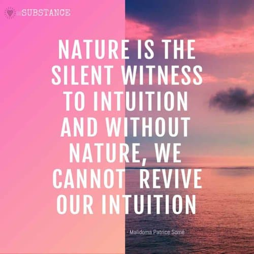 nature is the silent witness to intuition, quote by Malidoma Patrice Somé