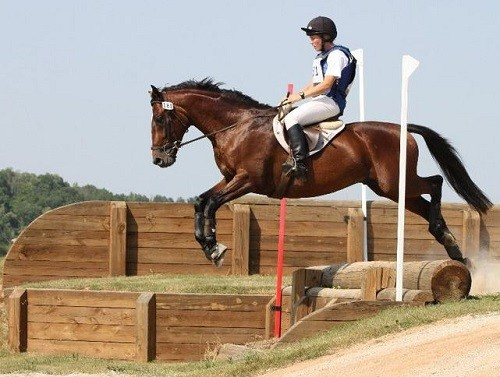 Wallace Eventing Drops ADM Equine Feed Sponsorship