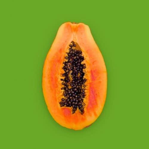 organic sunrise papaya non-gmo solo