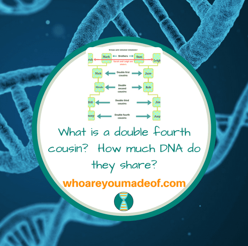What is a double fourth cousin_ How much DNA do they share_