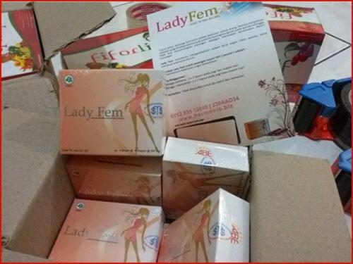 Agen resmi ladyfem kapsul