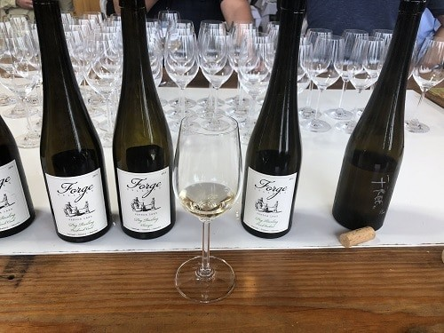 Riesling Variety on the Finger Lakes Wine Trail