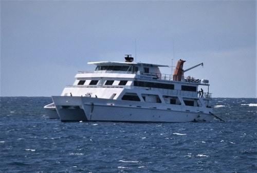 Reef Encounter Liveaboard Boat Cairns Great Barrier Reef Dive Trip