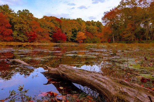 Best Time of Year to Visit the North Fork of Long Island - Autumn