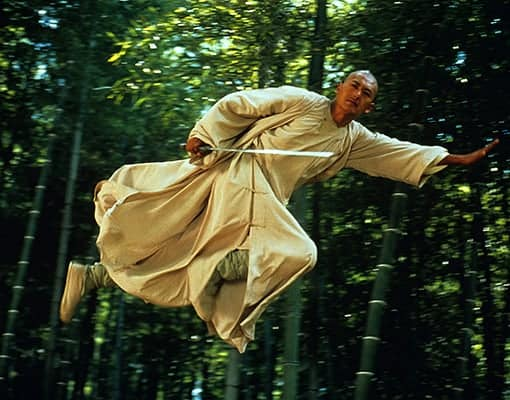 The bamboo forest fight scene is the reason people watch crouching tiger hidden dragon.