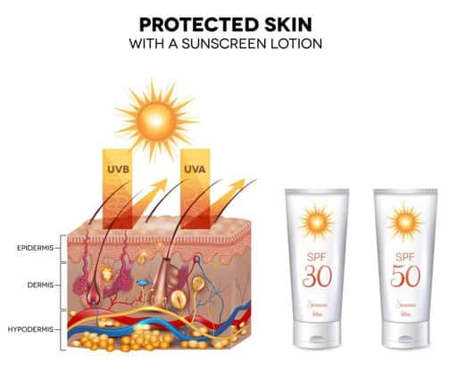 Protected skin with a sunscreen lotion