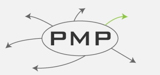 PMP mind map free download for PMP Exam and CAPM Exam