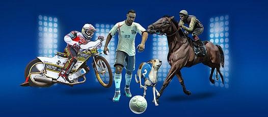 virtual-sports-betting
