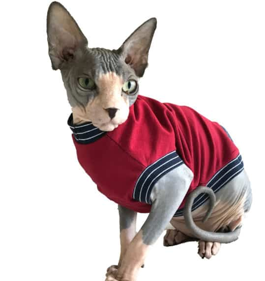 The Tailoress PDF Sewing Patterns - Sphynx Cat Clothes Pattern Testing