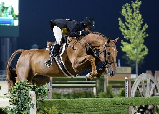 USEF Names 2015 International