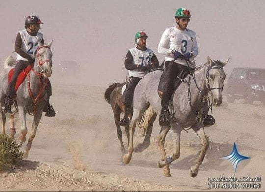 FEI Reinstates UAE after Horse Abuse Probe