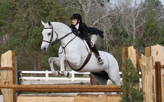 USEF Requires Proof of Vaccines to Compete