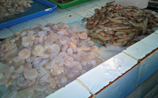 Prawns close up at Antigua Market