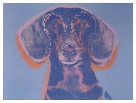 Andy Warhol, Portrait of Maurice the Dachshund, 1976