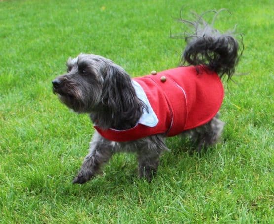 The Tailoress PDF Sewing Patterns - Jasper Jacket for Dogs PDF Sewing Pattern